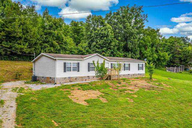 115 Clay Way, Greeneville, TN 37745 (MLS #9911689) :: Bridge Pointe Real Estate