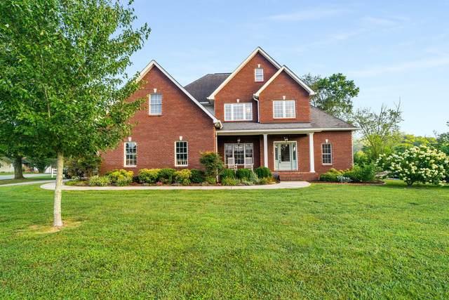 101 Wynhaven Drive, Kingsport, TN 37663 (MLS #9911699) :: Bridge Pointe Real Estate