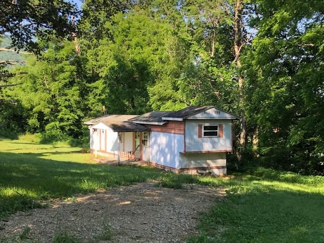 223 Georgia Street, Mountain City, TN 37683 (MLS #9911719) :: Bridge Pointe Real Estate