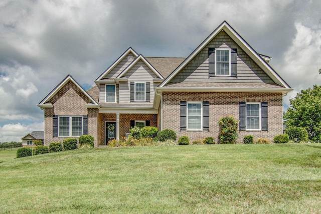 42 Shadden Springs, Gray, TN 37615 (MLS #9911722) :: Tim Stout Group Tri-Cities