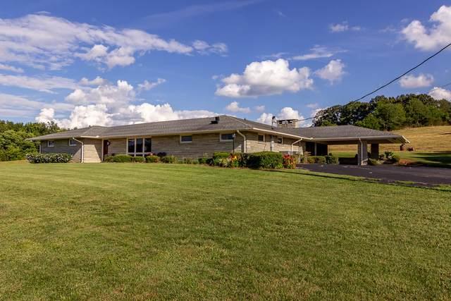 1779 Highway 11-E, New Market, TN 37820 (MLS #9911732) :: Bridge Pointe Real Estate