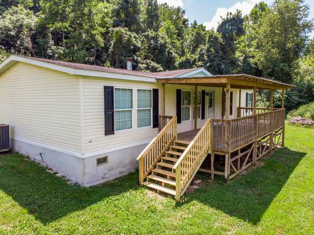 167 Osbornes Chapel Drive, Blackwater, VA 24221 (MLS #9911755) :: Tim Stout Group Tri-Cities