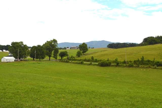 50 Waddell Love Road, Greeneville, TN 37743 (MLS #9911760) :: Bridge Pointe Real Estate