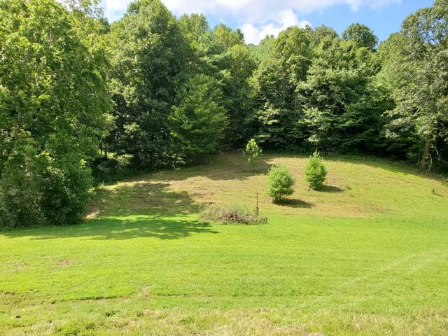 Tbd Wild Turkey, Mountain City, TN 37683 (MLS #9911803) :: The Lusk Team