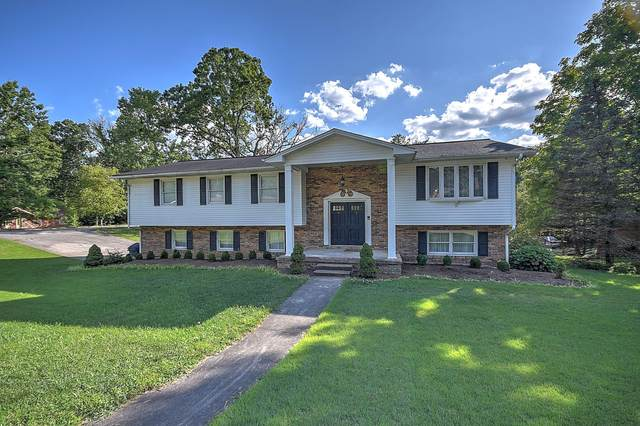 2613 Brighton Court, Kingsport, TN 37660 (MLS #9911954) :: Bridge Pointe Real Estate