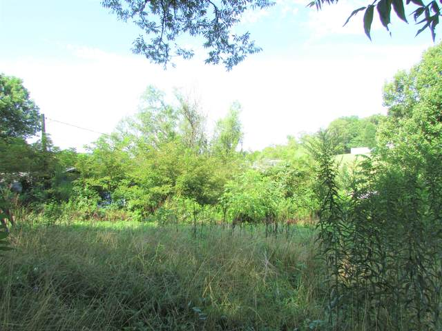 369 Jonesboro Drive, Bluff City, TN 37618 (MLS #9911982) :: Bridge Pointe Real Estate