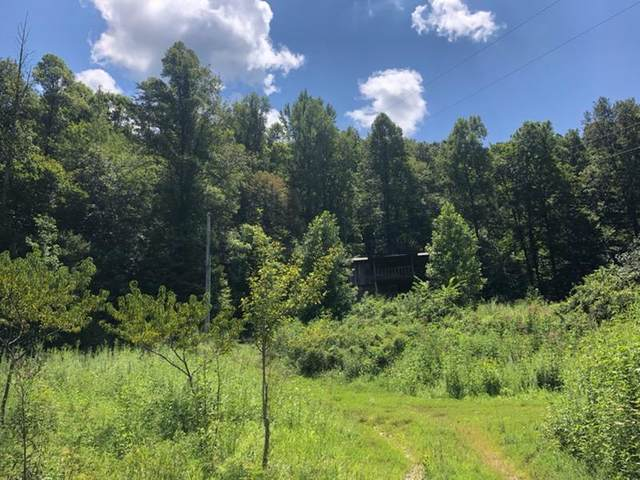 5265 Snake Hollow Road, Sneedville, TN 37869 (MLS #9911984) :: Tim Stout Group Tri-Cities