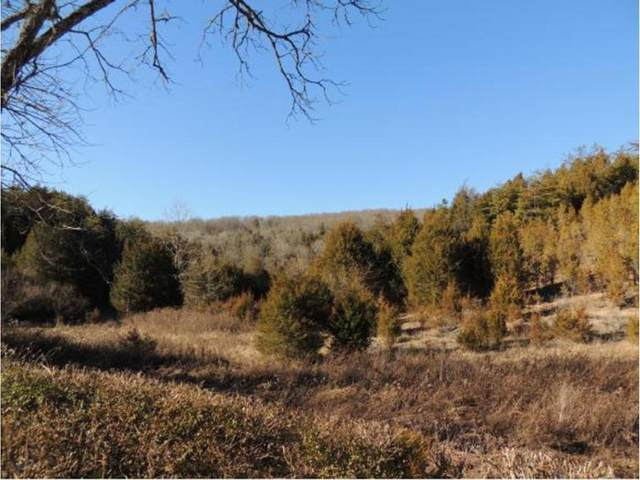 00 Highway 70 North, Eidson, TN 37731 (MLS #9912029) :: Conservus Real Estate Group