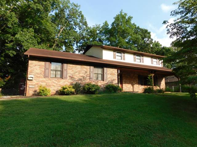 1019 Grace Drive, Johnson City, TN 37604 (MLS #9912268) :: Tim Stout Group Tri-Cities