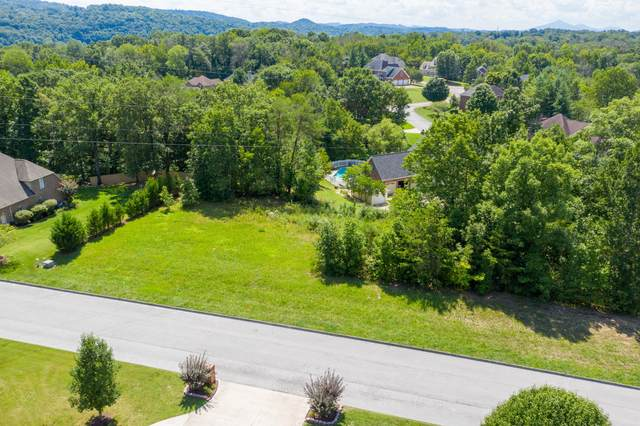 1796 Buckingham Court, Kingsport, TN 37660 (MLS #9912308) :: Bridge Pointe Real Estate