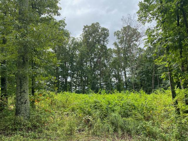 Lot 14 Allenwood Drive, Surgoinsville, TN 37873 (MLS #9912385) :: Tim Stout Group Tri-Cities