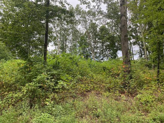 Lot 19 Allenwood Drive, Surgoinsville, TN 37873 (MLS #9912388) :: Tim Stout Group Tri-Cities