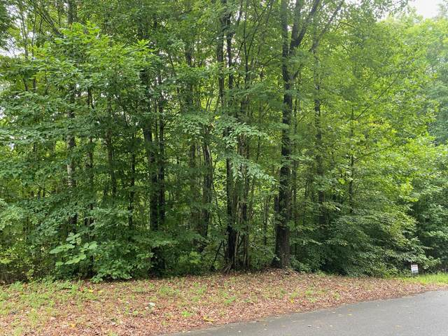 Lot 33 Allenwood Drive, Surgoinsville, TN 37873 (MLS #9912394) :: Tim Stout Group Tri-Cities