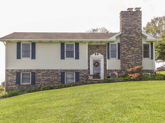 351 Camelot Drive, Bristol, TN 37620 (MLS #9912588) :: Tim Stout Group Tri-Cities