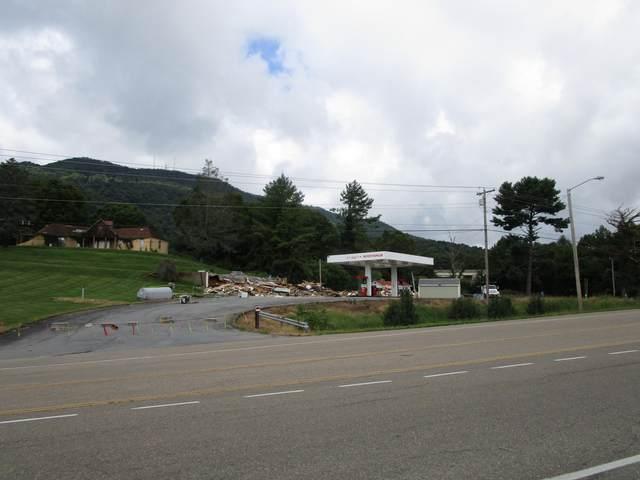 3206 Roan Street, Johnson City, TN 37601 (MLS #9912825) :: Bridge Pointe Real Estate
