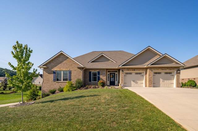1059 Little Shadden Way, Gray, TN 37615 (MLS #9912846) :: Tim Stout Group Tri-Cities