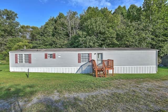 203 Warm Springs Road, Weber City, VA 24290 (MLS #9912874) :: Bridge Pointe Real Estate