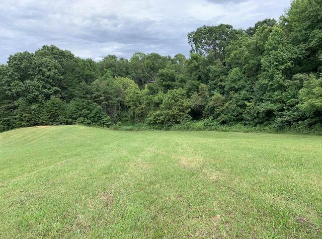 4070 Sherman Hollow Road, Parrotsville, TN 37843 (MLS #9913211) :: Tim Stout Group Tri-Cities