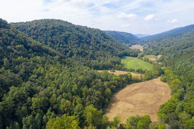 1235 State Route 604, Blackwater, VA 24221 (MLS #9913266) :: Red Door Agency, LLC