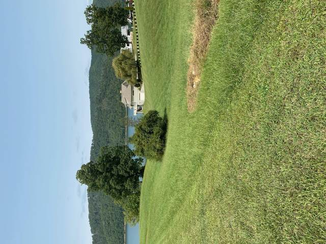 0 Harbour Point, Butler, TN 37640 (MLS #9913296) :: Tim Stout Group Tri-Cities