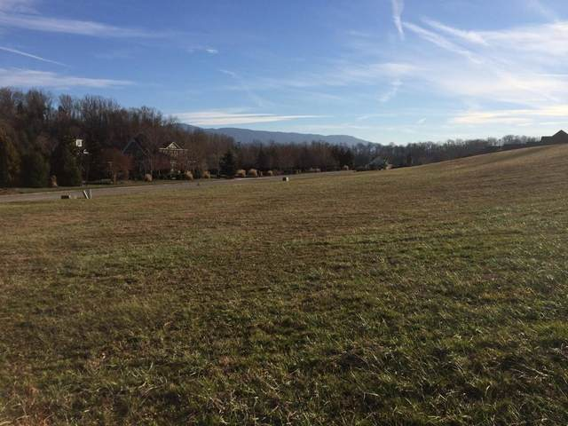 00 Waterstone Circle, Greeneville, TN 37745 (MLS #9913370) :: Highlands Realty, Inc.