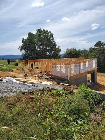 244 River Pointe Drive, Greeneville, TN 37743 (MLS #9913438) :: Conservus Real Estate Group