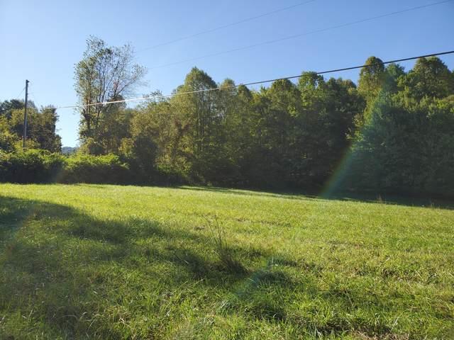 Tbd Mining Town Road, Mountain City, TN 37683 (MLS #9913440) :: Bridge Pointe Real Estate