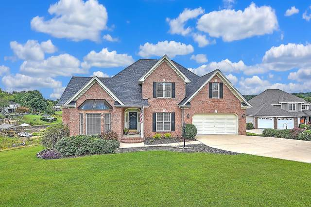 252 Cross Anchor Place, Piney Flats, TN 37686 (MLS #9913451) :: Highlands Realty, Inc.