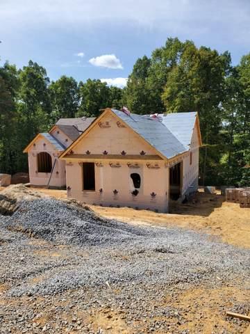 164 River Pointe Drive, Greeneville, TN 37743 (MLS #9913491) :: Conservus Real Estate Group