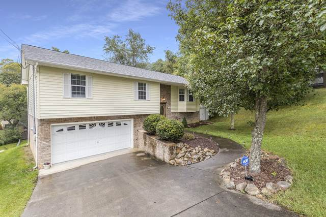 1133 Chippendale Road, Kingsport, TN 37660 (MLS #9913554) :: Highlands Realty, Inc.