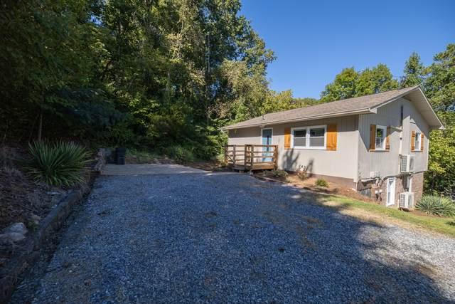 1005 Pine Grove Avenue, Kingsport, TN 37660 (MLS #9913563) :: Highlands Realty, Inc.