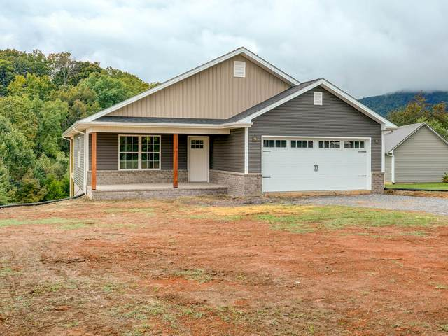 533 Okolona Road, Johnson City, TN 37601 (MLS #9913587) :: Red Door Agency, LLC