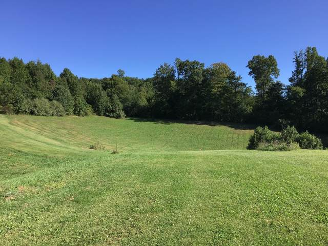 Tbd Strawberry Mountain, Wise, VA 24293 (MLS #9913644) :: Conservus Real Estate Group