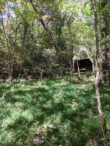 507 Poor Hollow Road, Kingsport, TN 37664 (MLS #9913741) :: Conservus Real Estate Group