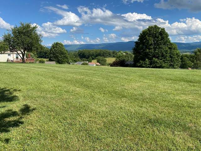 000 Lewis Street, Chilhowie, VA 24319 (MLS #9913756) :: Highlands Realty, Inc.