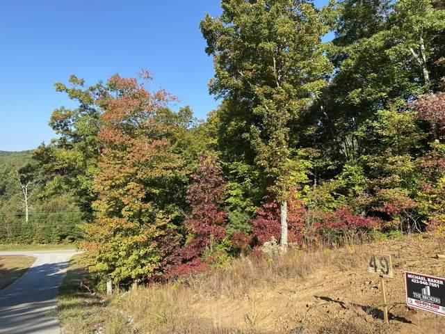 Tbd Homestead Drive, Unicoi, TN 37692 (MLS #9913944) :: Highlands Realty, Inc.