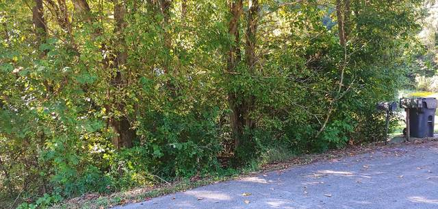 0 Samlola Road, Blountville, TN 37617 (MLS #9914030) :: Bridge Pointe Real Estate