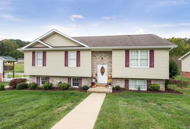 129 Hunters Run Lane, Mount Carmel, TN 37645 (MLS #9914048) :: Red Door Agency, LLC