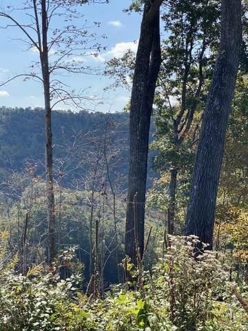 00 Hunters Valley Road, Duffield, VA 24244 (MLS #9914254) :: Highlands Realty, Inc.