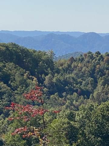 00 David Lane, Blackwater, VA 24221 (MLS #9914255) :: Highlands Realty, Inc.