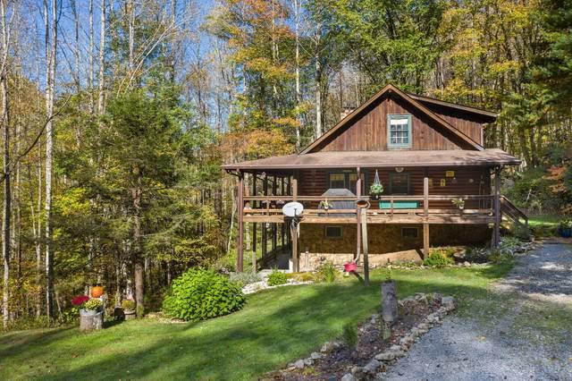 163 Clarktown Road, Roan Mountain, TN 37687 (MLS #9914338) :: Highlands Realty, Inc.