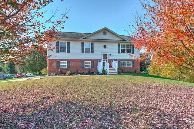 124 Emma Grace Drive, Jonesborough, TN 37659 (MLS #9914372) :: Bridge Pointe Real Estate