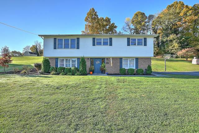 447 Brookwood Dr Drive, Bristol, TN 37620 (MLS #9914404) :: Bridge Pointe Real Estate