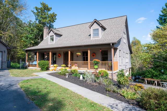 114 Rosebud Lane, Gray, TN 37615 (MLS #9914416) :: Bridge Pointe Real Estate