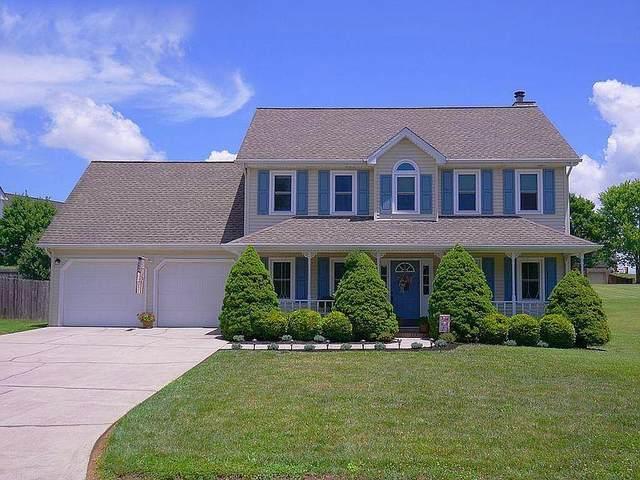 209 Walter Way, Johnson City, TN 37615 (MLS #9914480) :: Bridge Pointe Real Estate
