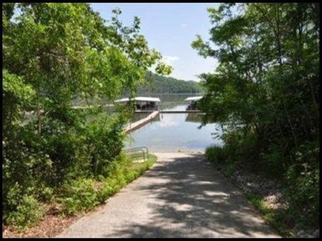 2010 Tahlequah Lane, Mooresburg, TN 37811 (MLS #9914490) :: Bridge Pointe Real Estate