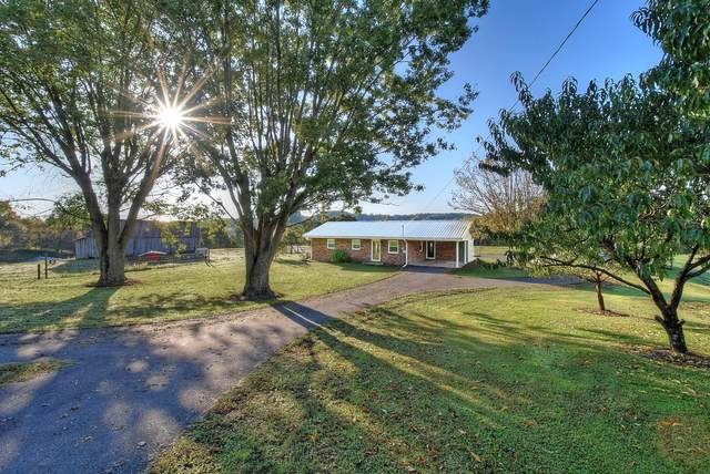 895 Clear Creek Road, Chuckey, TN 37641 (MLS #9914546) :: Bridge Pointe Real Estate