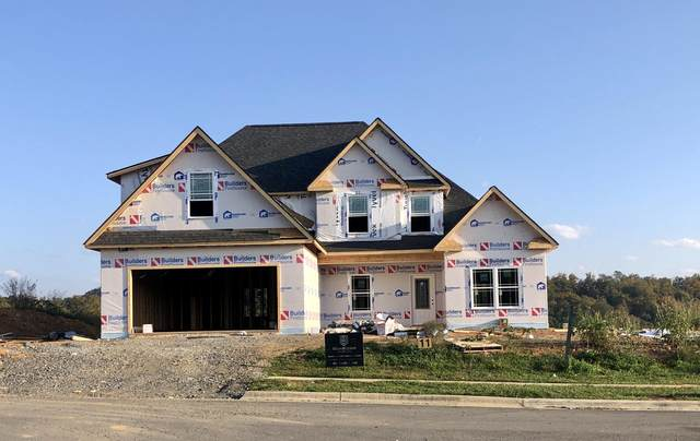 4107 Maize Place, Piney Flats, TN 37686 (MLS #9914557) :: Highlands Realty, Inc.