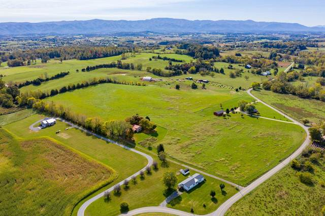Tbd Clear Springs Road, Limestone, TN 37681 (MLS #9914617) :: Conservus Real Estate Group