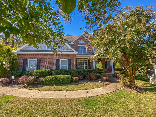 1124 Cliffview Circle, Gray, TN 37615 (MLS #9914619) :: The Lusk Team